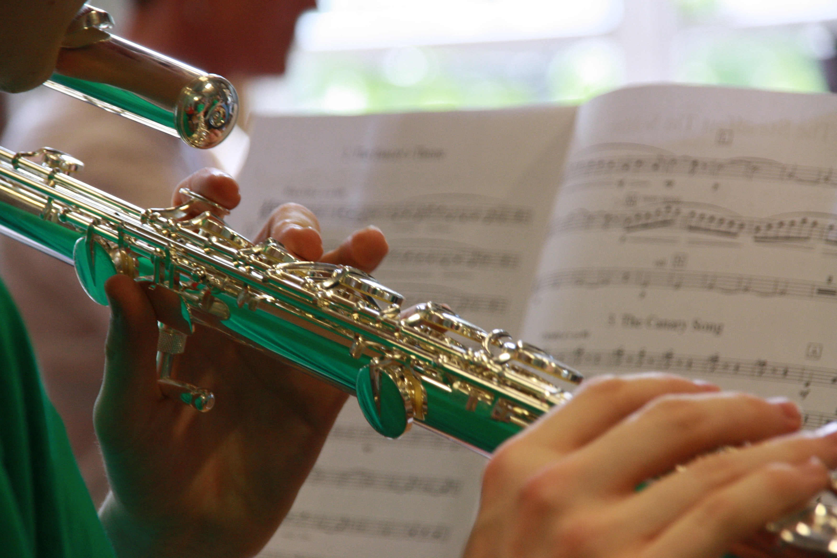 music education in schools Here you will find facts and data supporting arts integration and its benefits for schools worldwide stressing the importance of music education will provide.